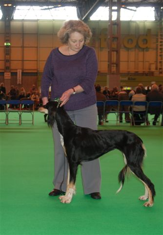 miracleatcrufts09.jpg